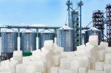 В Белоруссии назначены руководители двух сахарных заводов