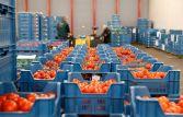 Экспорт белорусской сельхозпродукции возрос