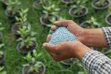 Более трети минеральных удобрений под весенний сев в Белоруссии уже накоплено