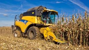 Уборка кукурузы в Белоруссии в целом близится к завершению