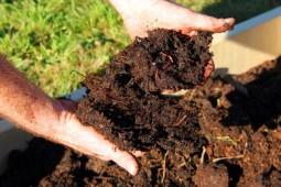 Более трех четвертей органических удобрений уже вывезено к месту назначения