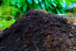 Внесение органических удобрений в почву в Белоруссии перевалило экватор