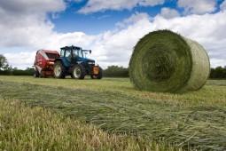 Пятая часть травяных кормов в Белоруссии уже заготовлена