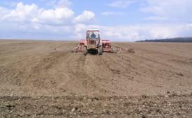 Несмотря ни на что, химпрополка сахарной свеклы в Белоруссии продолжается