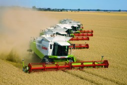 Уборка зерновых в Белоруссии набирает обороты