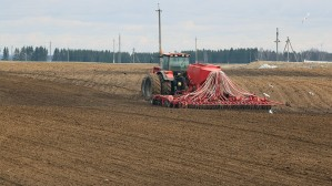Посевная в Белоруссии осуществлена уже на четверть